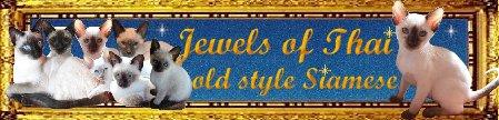 Jewels of Thai